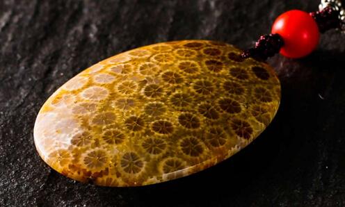 珊瑚玉的有什么独特的功效?